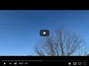 Bright Sky and Tree image